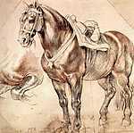 Peter Paul Rubens: Ló (tanulmány) (id: 1358) többrészes vászonkép