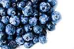 Kékáfonya szemek (id: 17358) poszter
