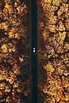 Út a Bakonyban - drónfotó (id: 16759) tapéta