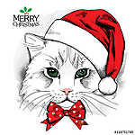 Christmas poster with cat portrait in red Santa's hat and bow. V (id: 14461) tapéta