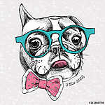 Portrait of a French Bulldog with glasses and tie. Vector illust (id: 14463) vászonkép