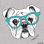 Image the portrait of a bulldog in the glasses. Vector illustrat (id: 14464)