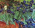 Vincent Van Gogh: Íriszek (id: 364)
