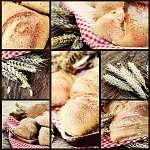 Friss kenyérkollázás (id: 4767) tapéta
