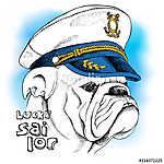 Image of portrait a dog bulldog in a sailor's cap. Vector illust (id: 14468) tapéta
