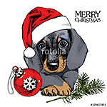 The christmas poster with the portrait of the dog Dachshund in t (id: 14473) falikép keretezve