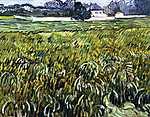 Vincent Van Gogh: Ház Auvers-nél (id: 2873) tapéta