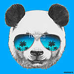 Hand drawn portrait of Panda with mirror sunglasses. Vector isol (id: 14874)