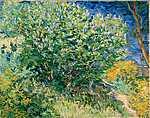 Vincent Van Gogh: Lila bokor (id: 374) vászonkép óra