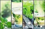 Mint tea collage (id: 4774) vászonkép óra
