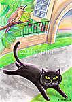 A fekete foltos macska és a madár (id: 5374) vászonkép