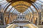 Természettudományi Múzeum, London, UK (id: 17176) tapéta