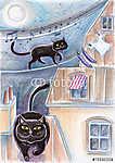 Fekete kóbor macskák a tetőkön (id: 5376) falikép keretezve
