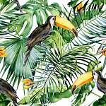A toucan madár zökkenőmentes akvarellje. Ramphastos. Tro (id: 12578)