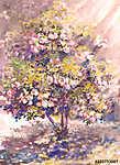 olajfestmény, virágzó virágzó bokor virággal, tavaszi tájkép (id: 10279) tapéta