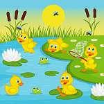 kacsacskák játszó tó - vektoros illusztráció, eps (id: 4484) poszter