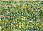 Vincent Van Gogh: Fűves rét (id: 2887) poszter