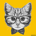 Hand drawn portrait of Cat with glasses and bow tie. Vector isol (id: 14889) tapéta