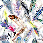 Watercolor bird feather pattern from wing. Aquarelle feather for vászonkép, poszter vagy falikép