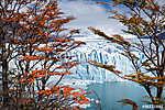 Glacier Perito Moreno, National Park Los Glasyares, Patagonia, A (id: 9194) vászonkép