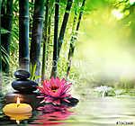 masszázs a természetben - liliom, kövek, bambusz - zen koncepció (id: 4595) falikép keretezve