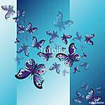 Set of blue butterflies (id: 13798) vászonkép