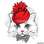 Portrait cat in a red Elegant woman's hat and with bow. Vector i (id: 14498)