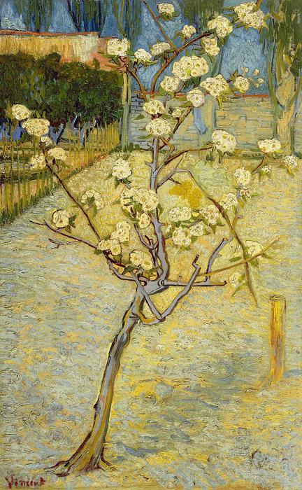 Virázó kis körtefa, Vincent Van Gogh