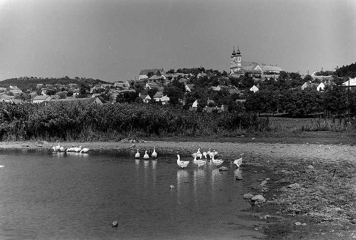 A tihanyi Belső-tó, jobbra a Bencés Apátság (1955), FORTEPAN