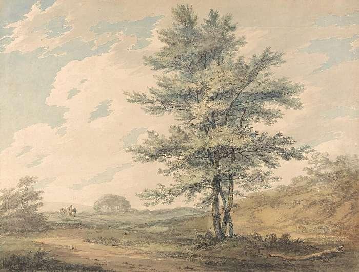 Tájkép fával, William Turner