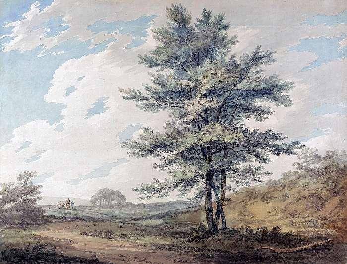Tájkép fával (színverzió 1), William Turner