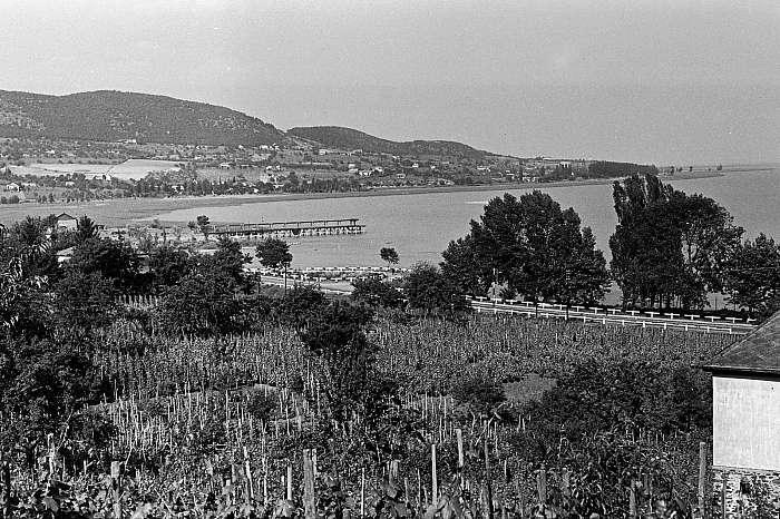 Badacsonytomaj (1954), FORTEPAN