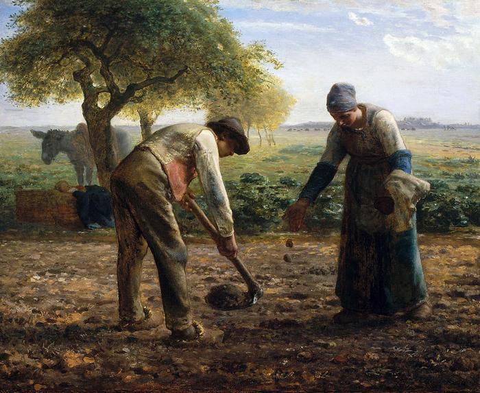 Burgonya ültetők - színverzió 1., Jean-François Millet