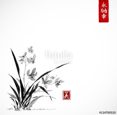 Vad orchidea a réten. A hagyományos japán festékfestés sumi-e, Premium Kollekció