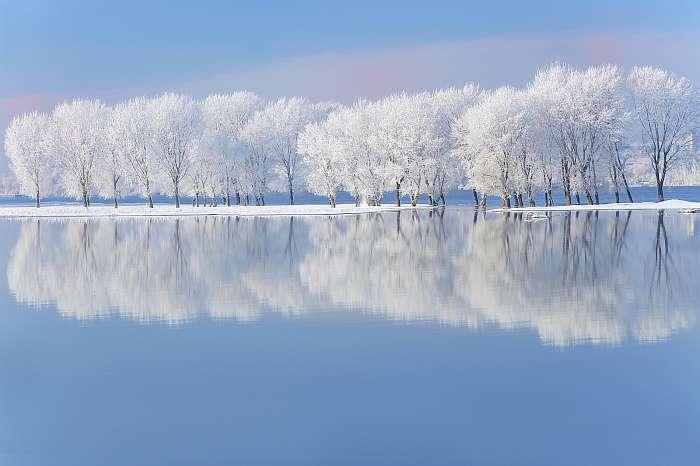 Zúzmarás, havas fák a folyóparton, Premium Kollekció