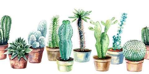 Kaktuszok cserépben tapétacsík,