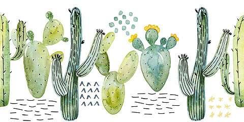Kaktuszos tapétacsík,