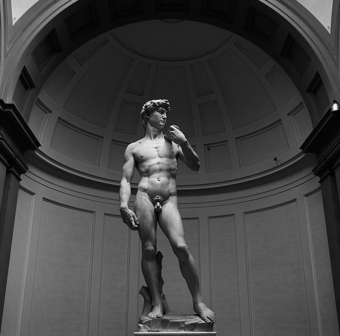 Michelangelo David szobor, Partner Kollekció