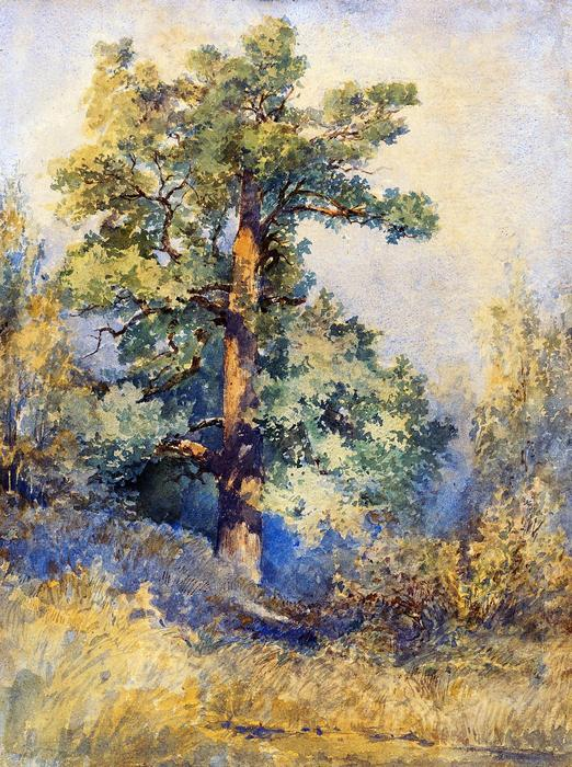 Egy fa vázlata (színverzió 1.), Mednyánszky László