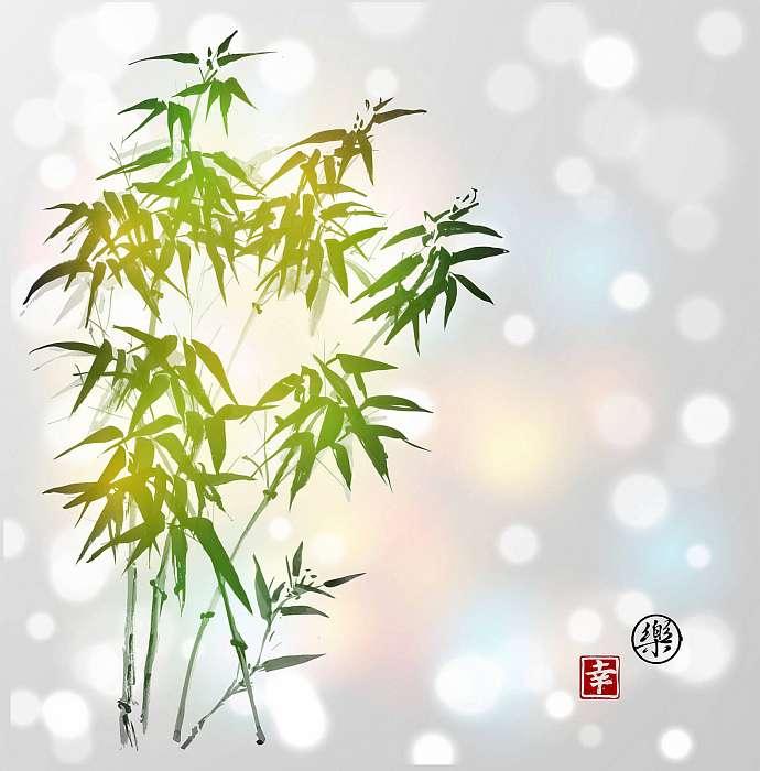 Zöld bambusz fehér háttéren. Hieroglfot tartalmaz, Premium Kollekció