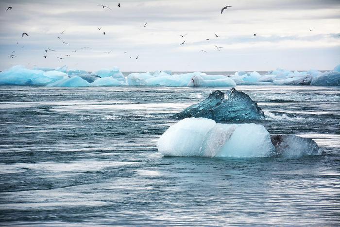 Olvadás a Jeges-tengeren, Partner Kollekció