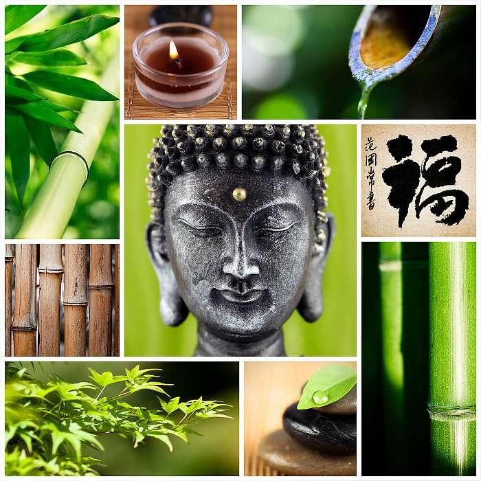 Zen Buddha, Premium Kollekció
