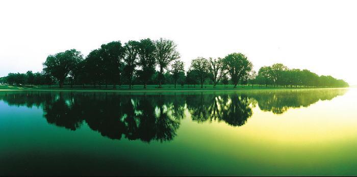 Vízben tükröződő tópart fákkal,