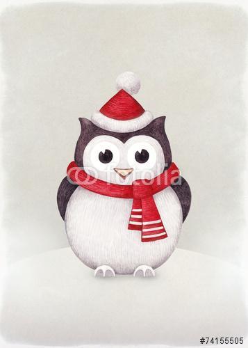 Owl akvarell illusztrációja, Premium Kollekció